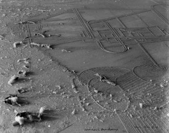 Marcel Duchamp e Man Ray - Dust breeding